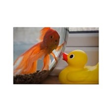 Goldfish and rubber duck Rectangle Magnet