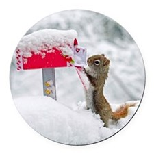 Squirrel searches for Valentines  Round Car Magnet