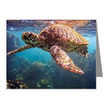 Snorkeling with Hawaiian Sea Note Cards (Pk of 20)