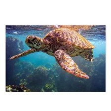 Snorkeling with Hawaiian  Postcards (Package of 8)