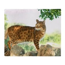 bengal cat Throw Blanket