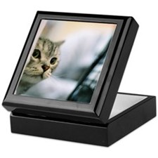 Cat is peeping Keepsake Box