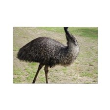 Emu goes walkabout Rectangle Magnet