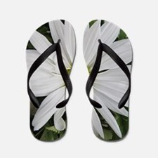 Daisy Cases and Covers Flip Flops