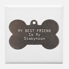 Stabyhoun Friend Tile Coaster