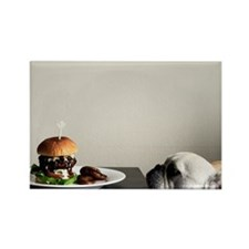 Hamburger and dog Rectangle Magnet