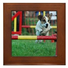 Dog Agility Jack Russell Terrier Framed Tile