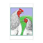Columbian Cock and Hen Mini Poster Print