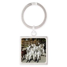 Goats on stampede Square Keychain