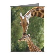 Mother and baby giraffe Note Cards (Pk of 20)
