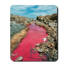 Coloured rock pool water Mousepad