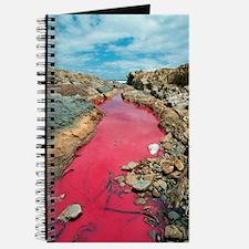 Coloured rock pool water Journal