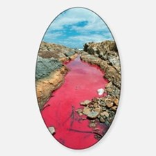 Coloured rock pool water Sticker (Oval)