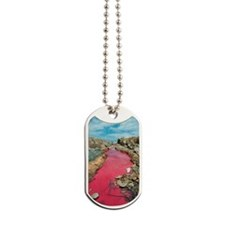 Coloured rock pool water Dog Tags