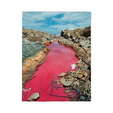 Coloured rock pool water Twin Duvet