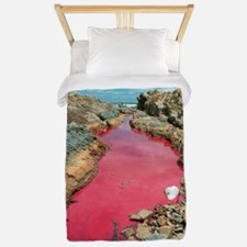 Coloured rock pool water Twin Duvet