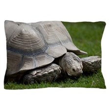 Giant tortoise Pillow Case