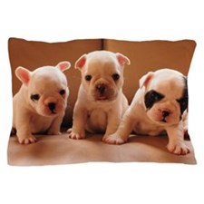 French bulldog puppy Pillow Case