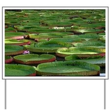 Water Lilies Yard Sign