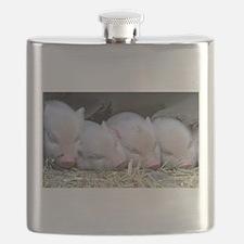 Unique Pig Flask