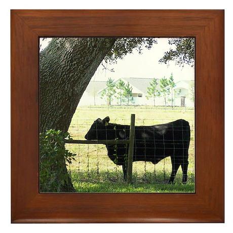 Old Florida Framed Tile