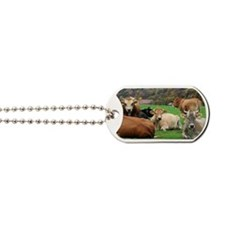 Bunch of cows resting on field in Austria Dog Tags