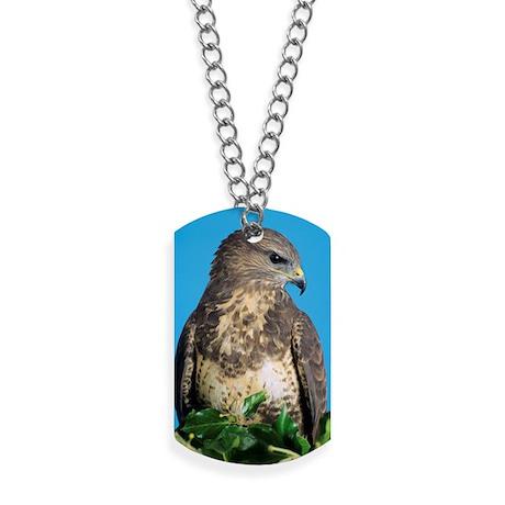 Common buzzard Dog Tags