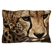 Cheeta close-up Pillow Case