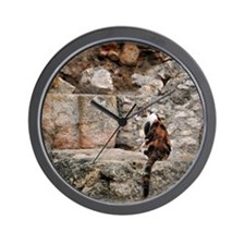 Feral cat and Roman ruins Wall Clock