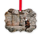 Cats of rome Picture Frame Ornaments