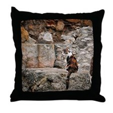Feral cat and Roman ruins Throw Pillow