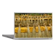 Dried rice Laptop Skins
