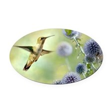 Hovering Hummingbird Oval Car Magnet