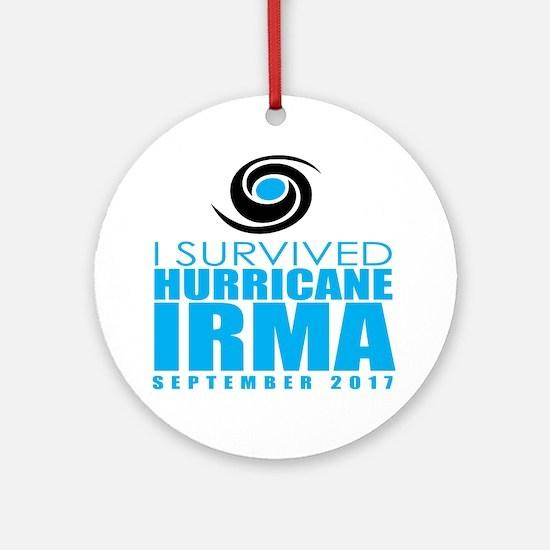 Cute Hurricanes Round Ornament
