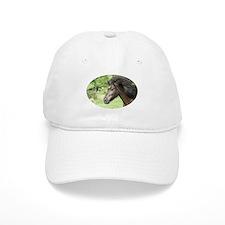 Icelandic horse Baseball Cap