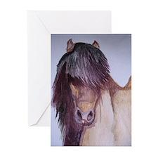 Cool Icelandic pony Greeting Cards (Pk of 10)