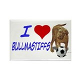 Bull mastiff Magnets