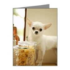 Chihuahua and pasta canister Note Cards (Pk of 20)