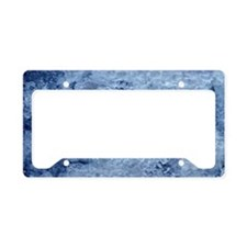 Ice Surface License Plate Holder