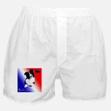 border collie Boxer Shorts