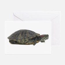 Red Ear Slider Photo Greeting Cards (Pk of 10)