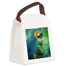 Blue and gold macaw Canvas Lunch Bag