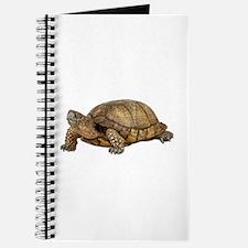 Box Turtle Journal