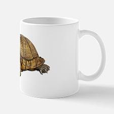 Box Turtle Mug