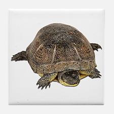 Blandings Turtle Tile Coaster