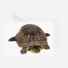 Blandings Turtle Greeting Cards (Pk of 10)