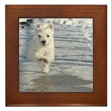 Westie puppy Framed Tile