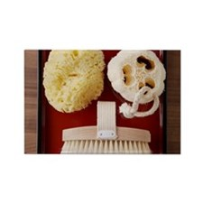 Sponge, loofah, brush on red tray Rectangle Magnet