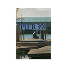 Sea lion at Pier 39, San Francisc Rectangle Magnet