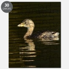 Pied-billed Grebe Puzzle